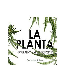 LA PLANTA napój z kwiatów Cannabis Sativa L. z dodatkiem prawdziwego soku z cytryny