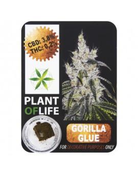 CBD Hash 3.8% Gorilla Glue Plant Of Life