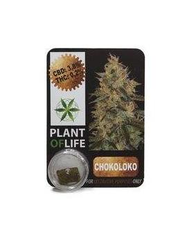 CBD Hash 3.8% Chokoloko Plant Of Life